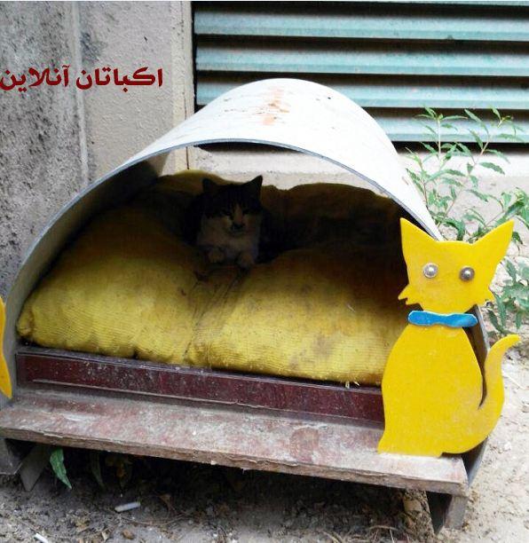 ساخت پناهگاه های کوچک برای حیوانات در شهرک اکباتان 1